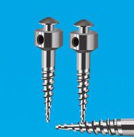 Bone nail implant nail